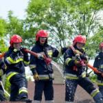 Usuwanie os, szerszeni straż pożarna, Fumigacja, Likwidacja zapachów, Bezpieczna deratyzacja, Gliwice, Śląsk